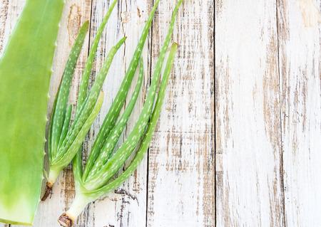 aloe vera: Close up Aloe Vera leaves on wooden background