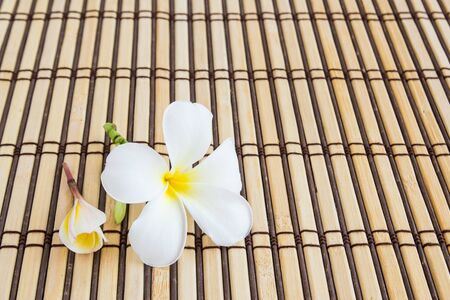 Close up Tropical Plumeria on Bamboo Mat for spa and wellness concept photo