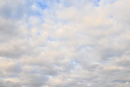 dark skies: Rainclouds or Nimbus in a rainy season