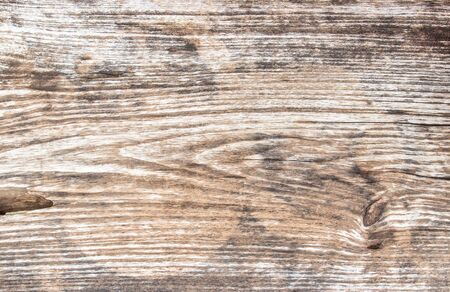 solid background: Hi res grunge wooden background and texture for any design Stock Photo