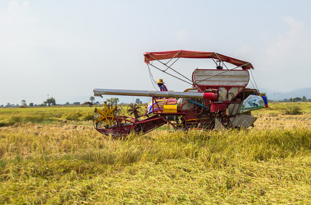 harvest festival: Harvester machinery, tractor at farm with combine collecting mature grain crops Stock Photo