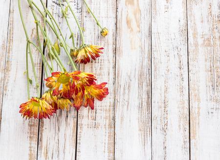 wood backgrounds: Fresh flowers on white wood table background Stock Photo