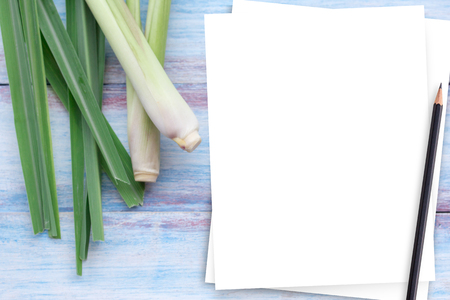 Close up white paper and fresh organic lemongrass no chemicals on wooden table