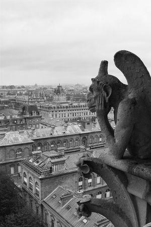 gargouille: Gargouille sur vue sur Notre-Dame de Paris sur un jour nuageux  Banque d'images