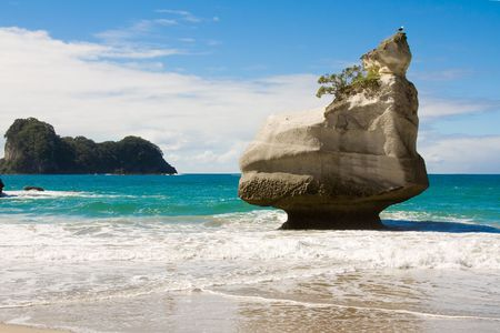 erode: Cathedral Cove Beach, New Zealand Stock Photo