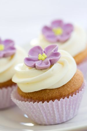 Purple cupcakes Stock Photo - 5829408