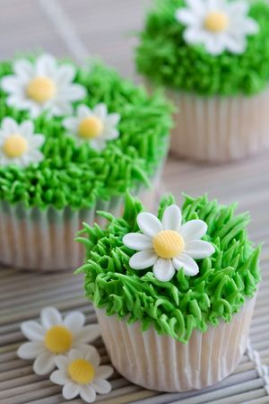 Daisy cupcakes Stock Photo - 6258563