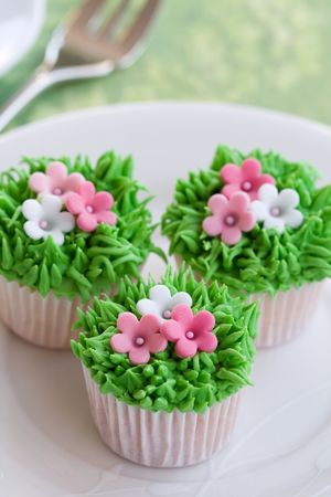 Flower garden cupcakes Stock Photo - 6258561