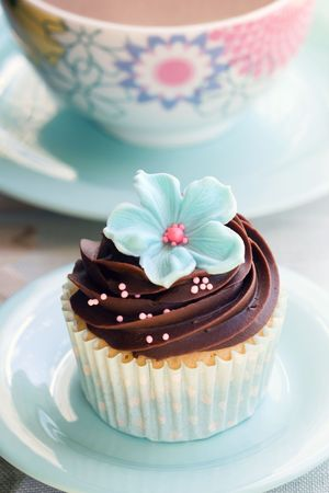 afternoon fancy cake: Cupcake