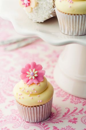 Cupcakes Stock Photo - 7141182