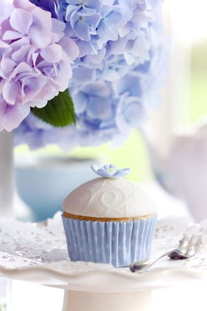 hydrangea flower: Afternoon tea