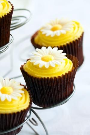 Cupcakes  Stock Photo - 7948250