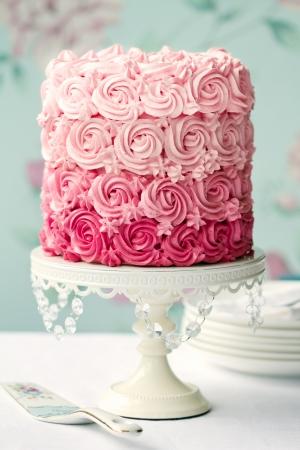 케이크: 핑크 선염 케이크