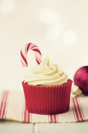 Christmas cupcake Stock Photo - 16292706