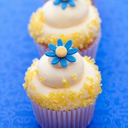 Flower cupcakes Stock Photo - 17119811