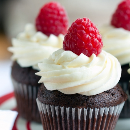 Chocolate raspberry cupcakes  Stock Photo - 17178656