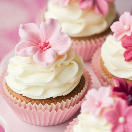 frosting: Cupcakes
