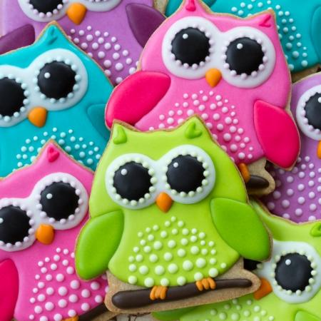 sugar cookies: Owl cookies Stock Photo
