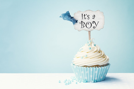 baby boy shower: Baby shower cupcake with copy space to side