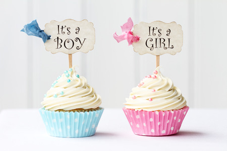 Baby shower cupcakes for a girl and boy photo