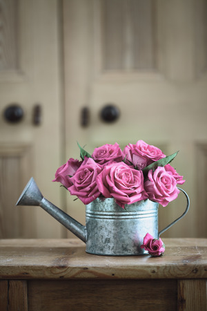 Vintage watering can with roses Stock Photo
