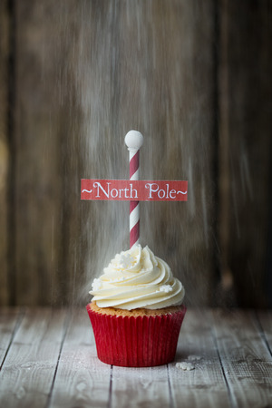 dusting: Christmas North Pole cupcake with a dusting of powdered sugar