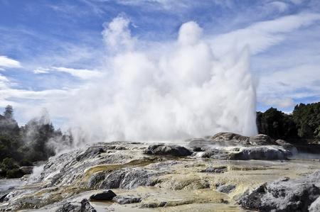 steam jet: Te Puia Geyser - Rotorua, New Zealand