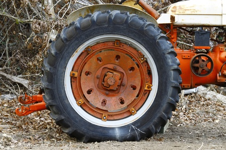 An old farm tractor wheel on an old farm tractor in the woods.
