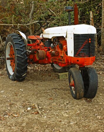 A high contrast shot of an old large orange and antique white Farm Tractor in the woods.
