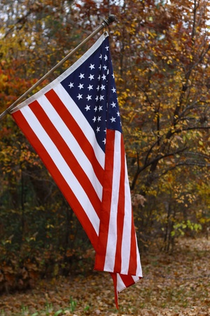 A vertical hanging American flag outside against a fall background