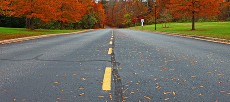 A long straight road leading through the woods and around on a beautiful fall day filled with color. Stock Photo