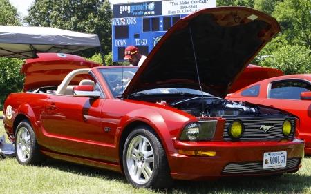 mustang gt: HAMPTON, VA-JUNE 9:A Mustang GT at the 3rd annual HCS car show at the Hampton Christian School in Hampton Virginia, 2012 in Hampton Virginia on June 9, 2012.