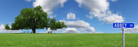 A pano of a large oak tree in a grass field in a park used as a shade tree for picnic tables on a gorgeous summer day with clouds and a gorgeous blue sky with room for your text. photo