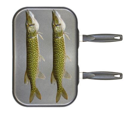 A large dual burner stovetop non stick frying pan with two freshwater chain pickerel on it isolated on white photo