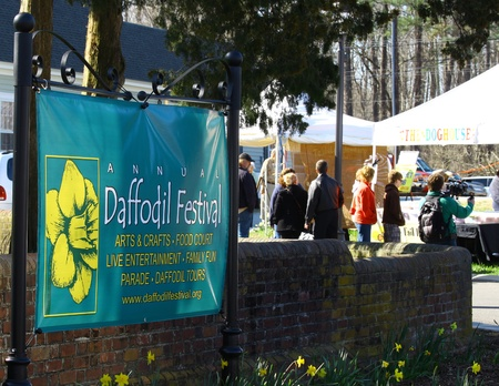 GLOUCESTER, VIRGINIA - APRIL 6: Daffodil Festival sign in the Daffodil Parade route on April 6, 2013 in Gloucester, Virginia. In its 27th year, the parade heralds the arrival of spring.