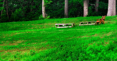 sloping: Some wooden tables and a wooden chair for relaxing in sitting in a sloping field along the edge of the woods Stock Photo