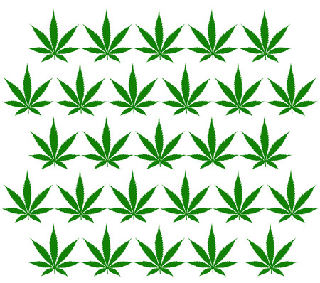 marihuana leaf: An illustration of a marihuana leaf pattern isolated on white for designers to use as they may choose in whatever way comes to their mind. Stock Photo
