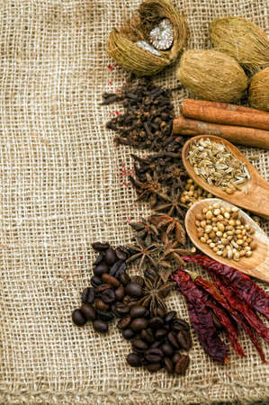 asian spices on a burlap canvas photo