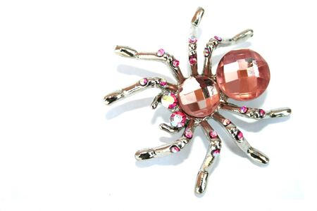 line lines luxury meeting: Nice spider brooch isolated on the white.