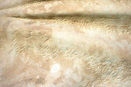 yellow stone: Amarillo piedra l�neas y ondas como tel�n de fondo.  Foto de archivo