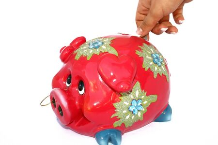 future earnings: Red piggy bank isolated on the white.