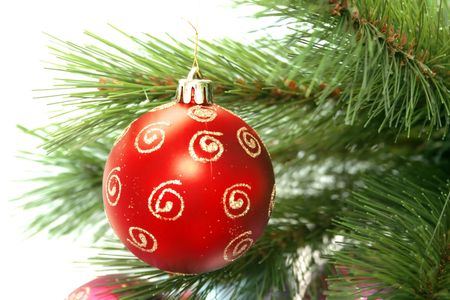Christmas red ball and fir-tree.