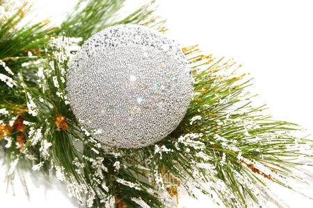 Christmas silvery ball on fir tree isolated on white background. Stock Photo - 5536917