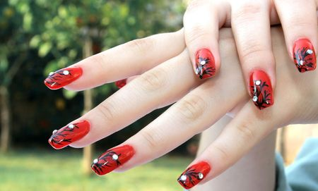 Woman hands with nail art fingers. photo