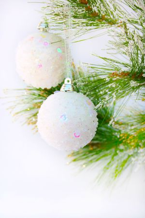 Christmas grey  balls hanging on fir ree isolated on white background. photo