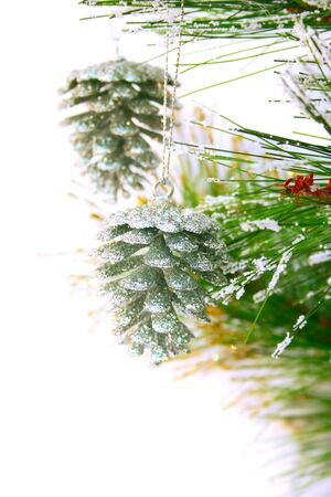Christmas grey  cones hanging on fir ree isolated on white background. photo