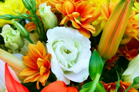 Flowers bouquet picture for greeting cards. Stock Photo - 7609891
