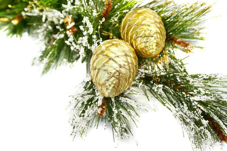 Christmas  cones and fir tree on white background. Фото со стока