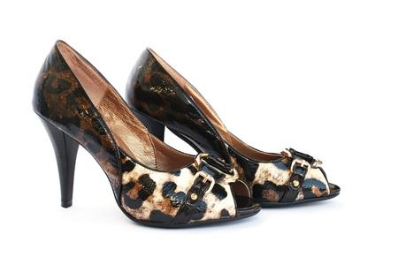 Womanish shoes isolated on white background. Stock Photo - 11137022