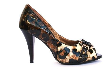 Womanish stylish shoe isolated on white background. Stock Photo - 12235161